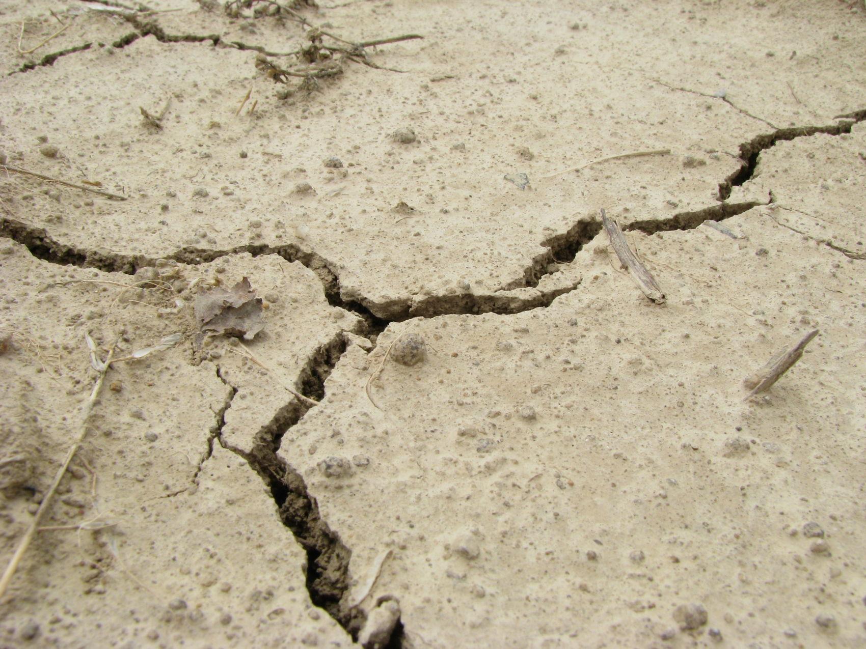 Co robić podczas trzęsienia ziemi? Rady przed, w trakcie i po