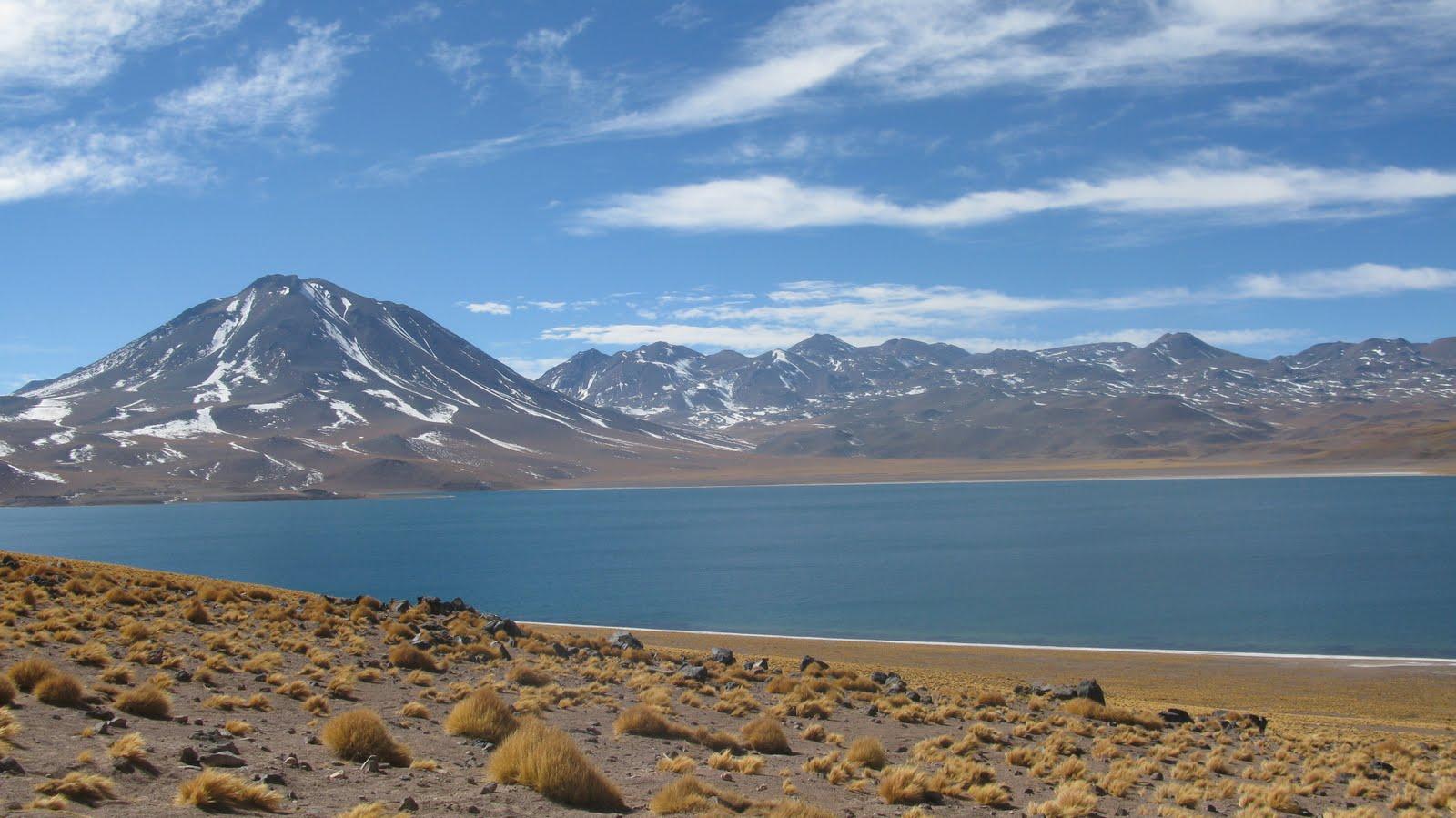 Atacama, dzień 3 – laguny i flamingi