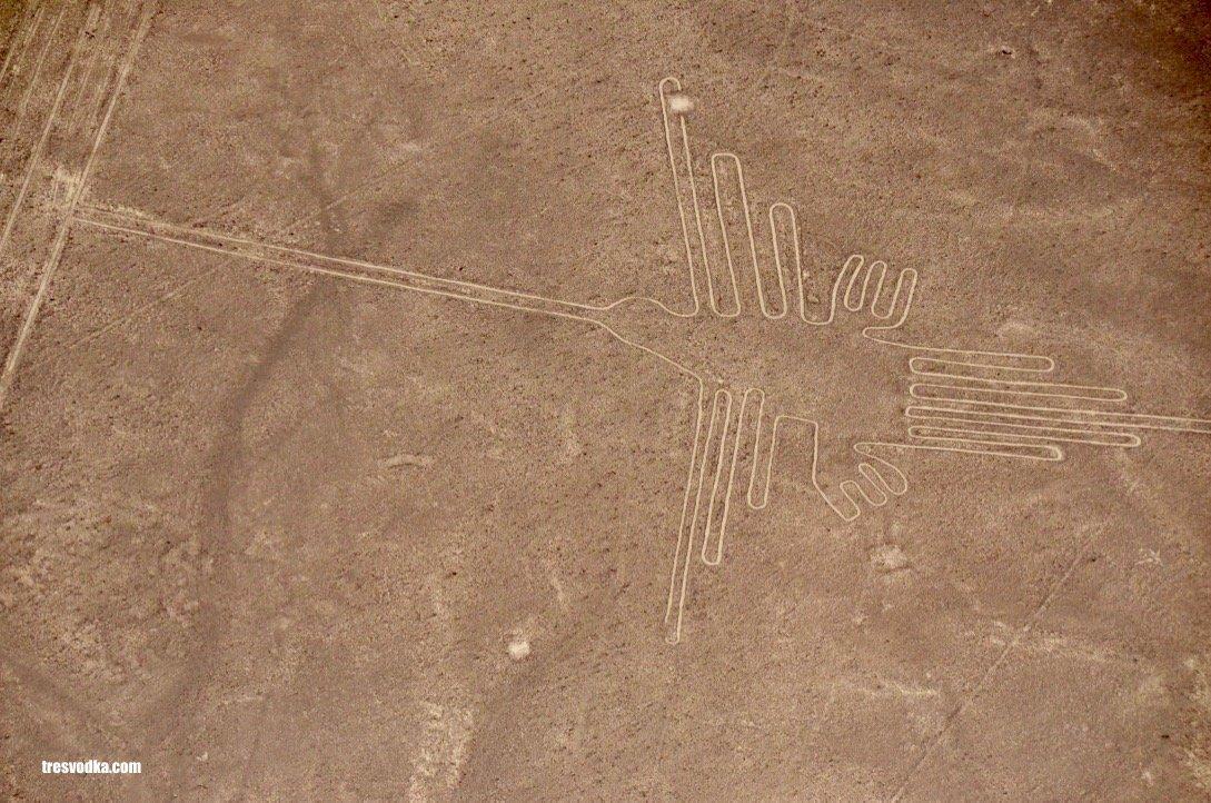 Linie Nazca, Peru [GALERIA]