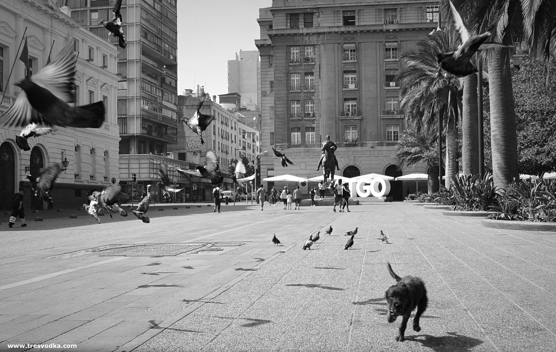 Santiago w czasach pandemii [GALERIA]